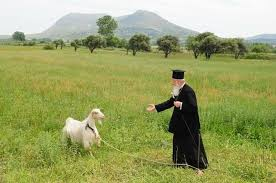 Patriarchal Encyclical For The Protection Of The Environment (September 1st, 2020)